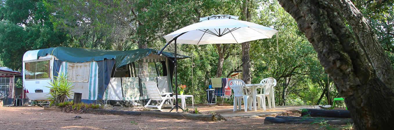 Camping Les Janets  Bormes Les Mimosas Dans Le Var
